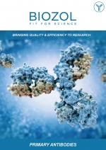 primary-antibodies