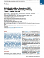 SARS-CoV-2-Cell-Entry
