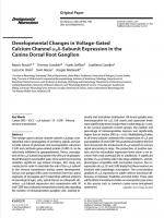 Developmental-Changes-in-Voltage-Gated