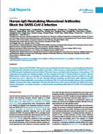 Human-IgG-Neutralizing-Monoclonal