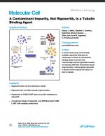 A Contaminant Impurity, Not Rigosertib, Is a Tubulin Binding Agent
