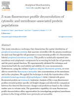Z-scan-fluorescence-profile-deconvolution