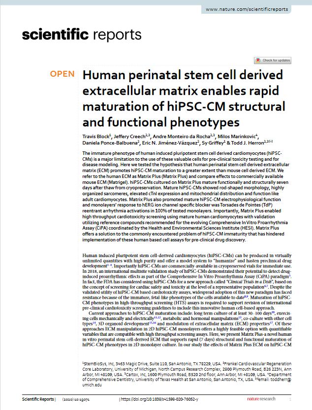 Human-perinatal-stem-cell