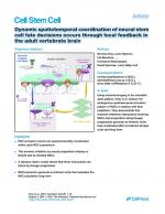 Dynamic-spatiotemporal-coordination