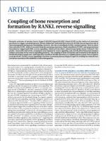 Coupling-of-bone-resorption