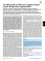 The ORF8 protein of SARS-CoV-2 mediates immune evasion through down-regulating MHC-Ι