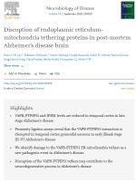 Disruption-of-endoplasmic-reticulum-mitochondria
