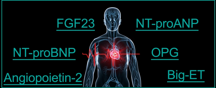 cardiovascular biomarkers