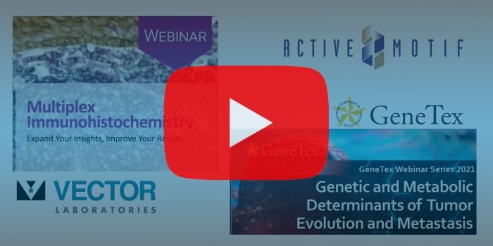 Webinars from Vector Laboratories, Active Motif, and Genetex