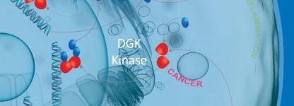 DGK Kinases from SignalChem