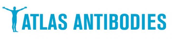 atlas-antibodies