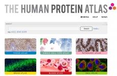 proteinatlas