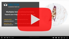 Vector Webinar Multiplex Immunohistochemistry