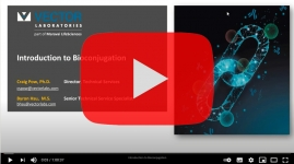 vectorlabs-bioconjugation
