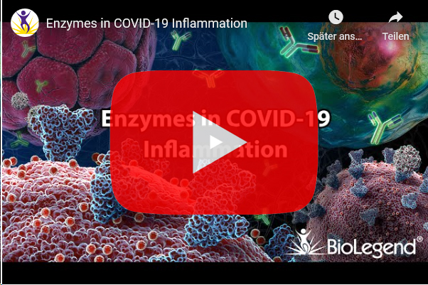 biolegend-enzymes-in-covid-19-inflammation