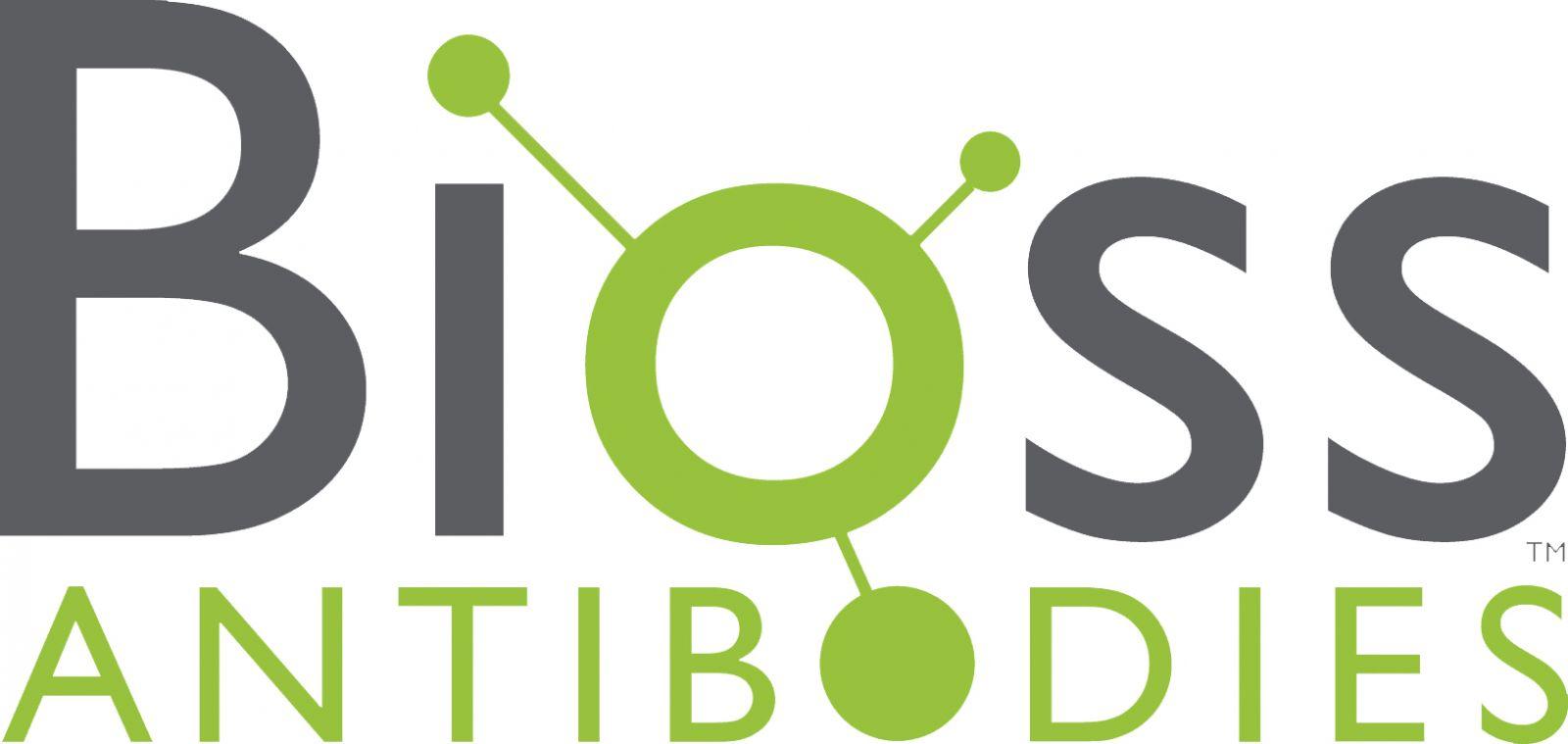 Bioss Antibodies