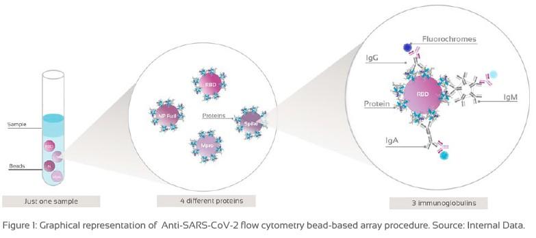 SARS-CoV-2 flow cytometry