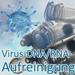 Virus-DNA/RNA-Aufreinigung