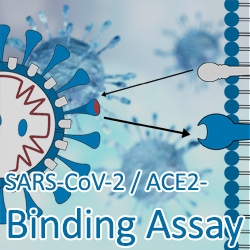 SARS-CoV-2 / ACE-2 Binding Assay