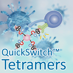 MBL QuickSwitch Tetramers for Vaccine Development
