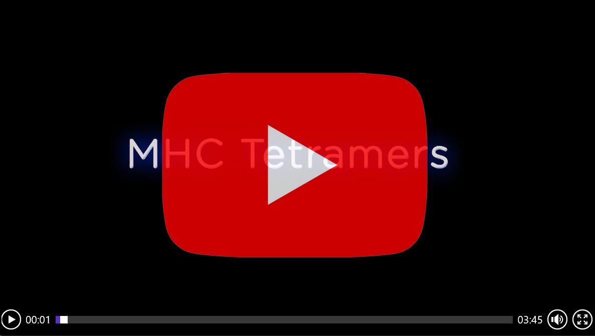 VIDEO: MHC Tetramers